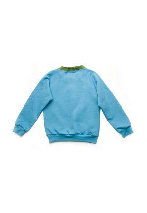 реглан синий с зеленым для мальчика купить Днепр