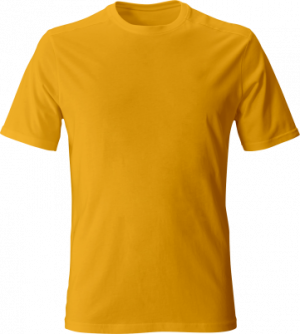 желтая футболка однотонная мужская